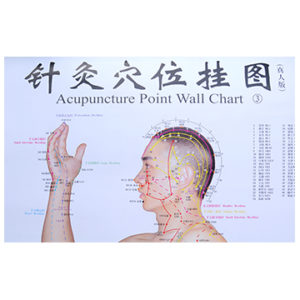 wallchart
